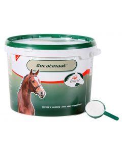 Primeval Gelatinaat Voor Paarden 5 Kg