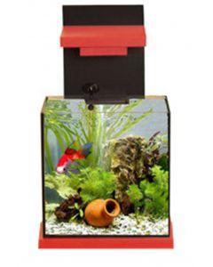 Adm Aquacubic Aquarium Met Filter Zwart/rood 15 Ltr 30x22x30 Cm