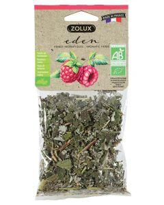 Zolux Eden Framboosbladeren 20 Gr